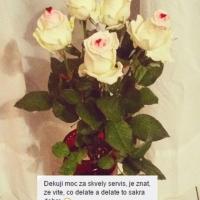 Kytice růží zákazníci - růže z lásky