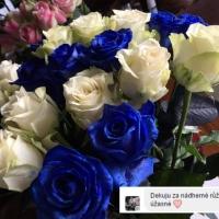 Kytice růží zákazníci - bílé a modré