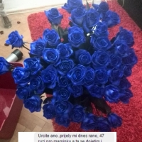 Kytice růží zákazníci - modré růže