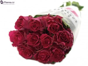 10 růží