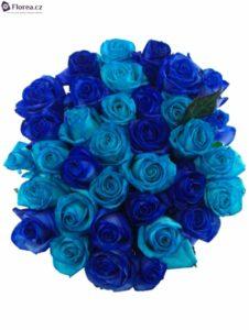 30 růží - modré míchané růže