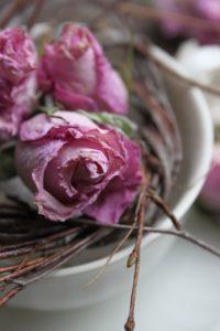 Sušení růží