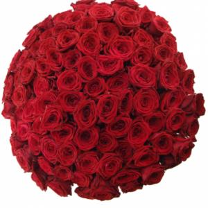 Kytice 100 rudých růží RED NAOMI! 60cm