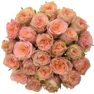 Kytice 25 růží LOVE PEARL 60cm