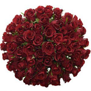 Kytice 55 rudých růží BURGUNDY 60cm