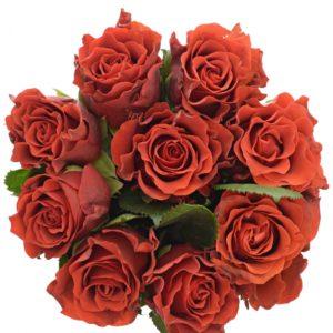 Kytice 9 červených růží RED CORVETTE 50cm
